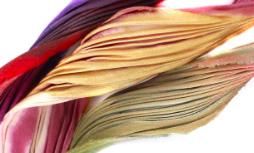 Shibori Ink Silk Scarves & Ribbons